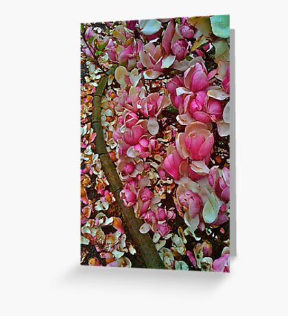 ♥ ♥ ♥ ♥  Alright, this is  ♥ ♥ ♥ ♥ Waiting for Spring!... by Brown Sugar. featured in SUPERBLY VISUAL. Views :116. Greeting Card