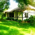 Fairies must live in cottages like these :) by Ritu Lahiri