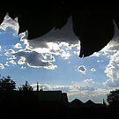 Clouds of the Free State / Wolke van die Vrystaat 02 by Karlientjie