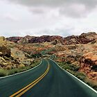 Follow the Yellow Lined Road by Robyn Forbes