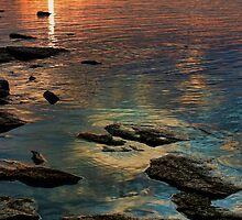 Feather Rock by Carolyn  Fletcher
