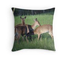 White-tail Deer Throw Pillow