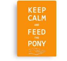 Keep Calm And Feed The Pony  Canvas Print