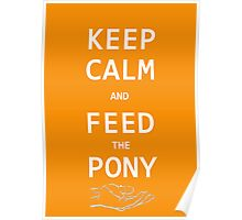Keep Calm And Feed The Pony  Poster