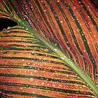 Leaf abstract by Yuri Lev