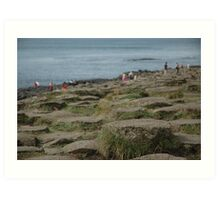 Steps on the Giant's Causeway Art Print