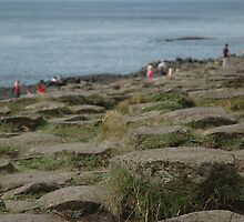 Steps on the Giant's Causeway by Pete Johnston