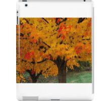 Colorful Maple tree iPad Case/Skin