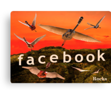 Facebook Rocks Canvas Print