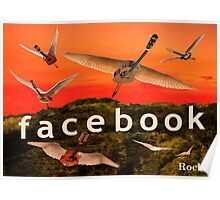 Facebook Rocks Poster