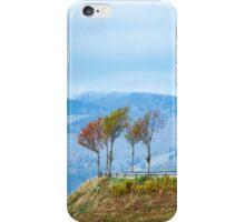 By the Roadside iPhone Case/Skin