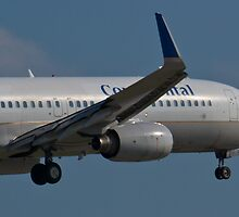 N37252 Nose Shot Continental Airlines Boeing 737-824 by Henry Plumley