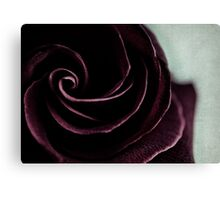purple swirl Canvas Print