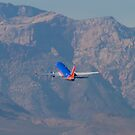 N370SW Southwest Airlines Boeing 737-7H4 Departure by Henry Plumley