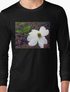 Dogwood Blossom Long Sleeve T-Shirt