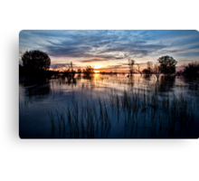Menindee Magic Canvas Print