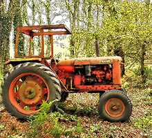Fordson Tractor by sarnia2