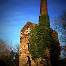 ENGINE HOUSE by AndyReeve