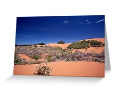 Perry Sandhills Greeting Card
