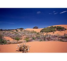 Perry Sandhills Photographic Print