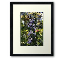 Little Star Flowers Framed Print