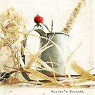 Winter's Bouquet by L J Fraser