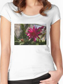 Vivacious Christmas Cactus Bloom Women's Fitted Scoop T-Shirt