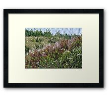 Cape Breton Flowers Framed Print