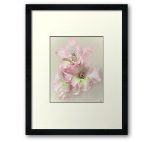 Happy light Framed Print