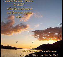 Peace Be Still by Glenn McCarthy