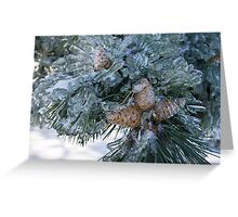 Mother Nature's Christmas Decorations - Pine Cones Greeting Card