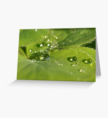 Every drop matters ~ Greeting Card