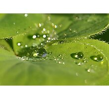 Every drop matters ~ Photographic Print