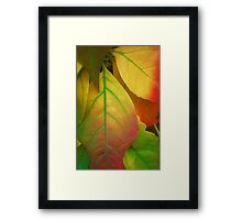 A song For Autumn Framed Print