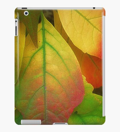 A song For Autumn iPad Case/Skin