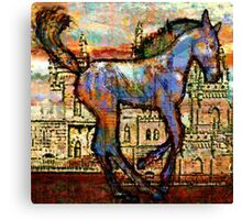 Baby Horse of the Apocayplse Canvas Print