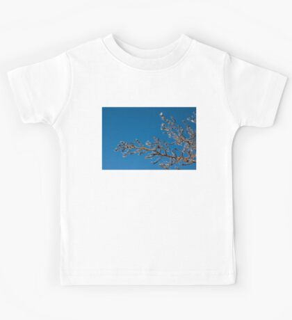 Mother Nature's Christmas Decorations - Shiny Ice Baubles  Kids Tee