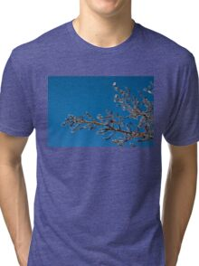 Mother Nature's Christmas Decorations - Shiny Ice Baubles  Tri-blend T-Shirt