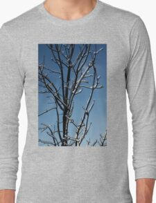 Mother Nature's Christmas Decorations - Icy Twig Jewels Long Sleeve T-Shirt