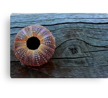 Washed Up & Found Canvas Print
