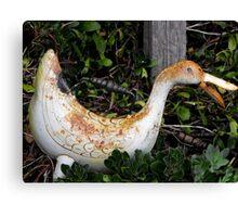 Rusty Ducky Canvas Print