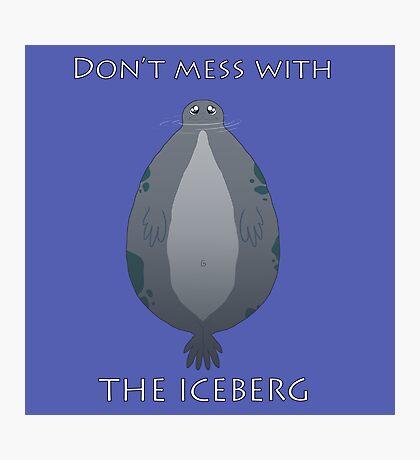 Iceberg Seal Photographic Print