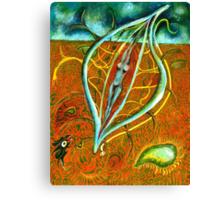 Dacian Dreamcatcher Canvas Print