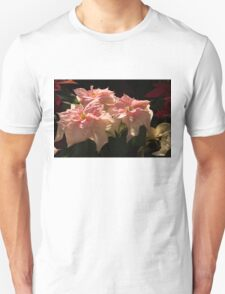 Sunny Pink Poinsettias T-Shirt