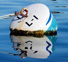Buoy in Blue by tom j deters