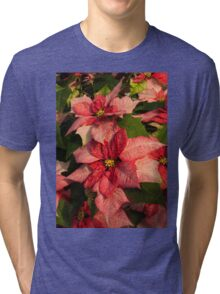Exotic Speckled Poinsettia Blossoms - Christmas from the Tropics  Tri-blend T-Shirt