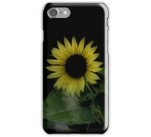 Halo of a Sunflower iPhone Case/Skin