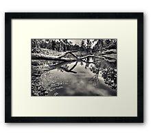 Crystal Pond Framed Print
