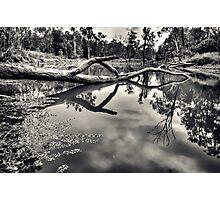 Crystal Pond Photographic Print