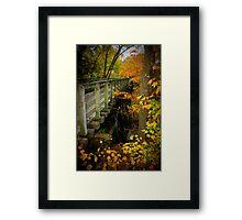 Virginia Creeper Trail Bridge at Abingdon Framed Print